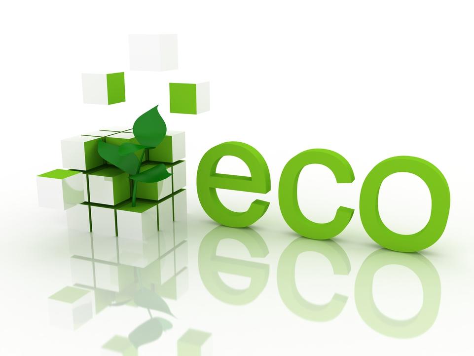 תוכנית רישוי עסקים ירוק