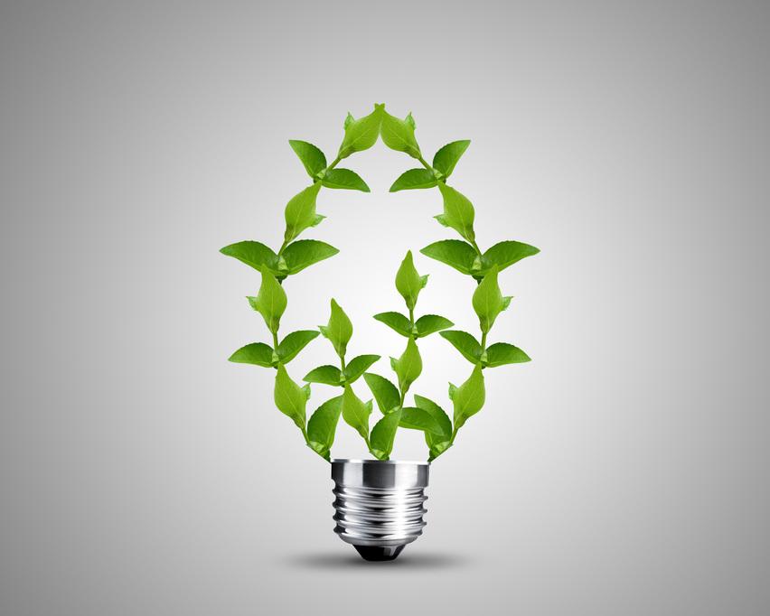 המשרד להגנת הסביבה ורישוי עסקים